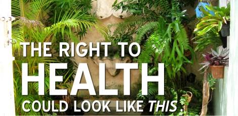 righttohealth